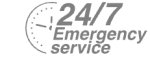 24/7 Emergency Service Pest Control in Hounslow West, Hounslow Heath, Cranford, TW4. Call Now! 020 8166 9746